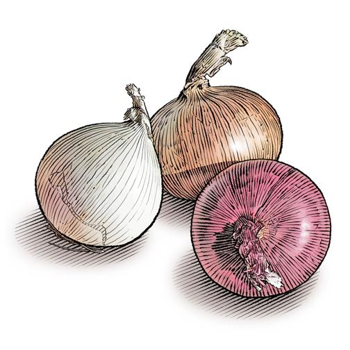μακαρόνια ζυμαρικά με καραμελωμένο κρεμμύδι και κουκουνάρι