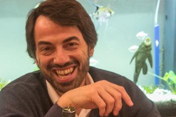 Dimitris Steinhauer