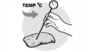 θερμόμετρο κρέατος φούρνου