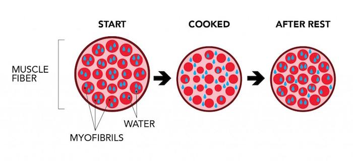 τι συμβαίνει στο κρέας κατα το μαγείρεμα