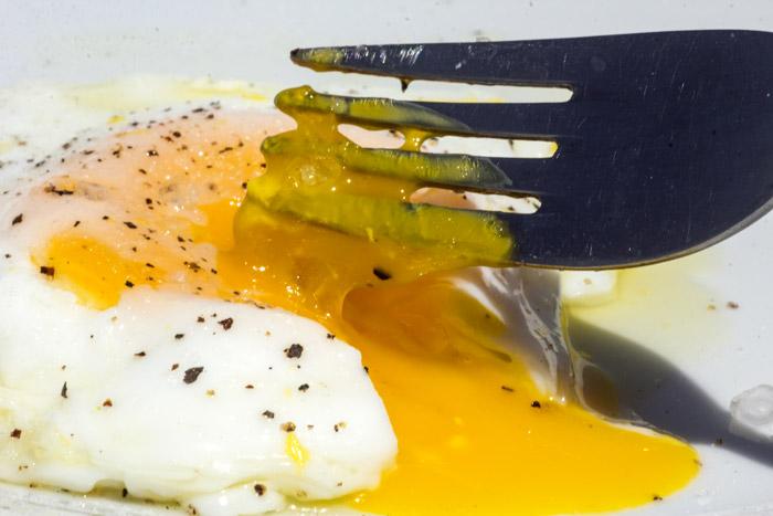 αβγό μελατο