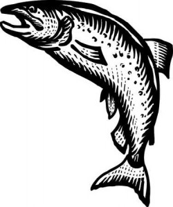 salmon woodcut