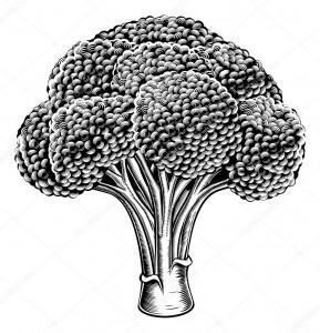 soufflé brocoli