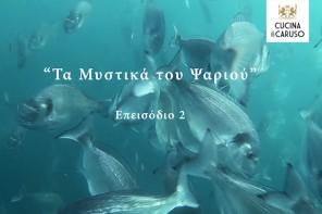 Τα Μυστικά του Ψαριού – επεισόδιο 2 (video)