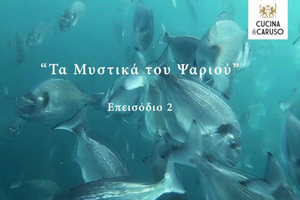 Μυστικα ψαριου - επεισοδιο 2