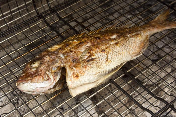 φαγκρί ψητο στα καρβουνα και η τεχνική για ψαρια στη σχαρα